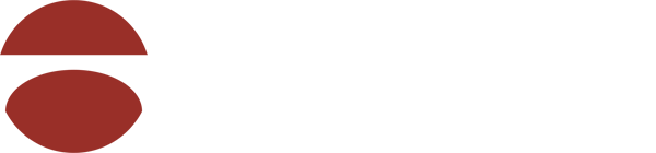 WorldBridge Partners - Healthcare Software Division